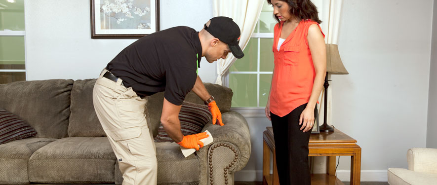 Lorain, OH carpet upholstery cleaning